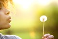 Young woman blowing dandelion flower outdoors close up portrait of a Royalty Free Stock Photo
