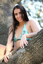 Young woman blue bikini in oak tree Royalty Free Stock Image