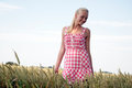 Young woman in a corn field blonde plaid dress goes through cornfield she looks relaxed and cheerful Royalty Free Stock Photography
