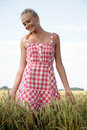 Young woman in a corn field blonde plaid dress goes through cornfield she looks relaxed and cheerful Stock Image