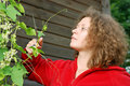 Young woman cutting climber plant Royalty Free Stock Photos