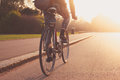Young woman cycling in the park at sunset a is into Royalty Free Stock Photos