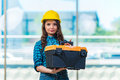 The young woman doing home improvements Royalty Free Stock Photo