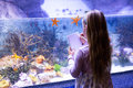 Young woman drawing starfish in a tank at the aquarium Royalty Free Stock Photo