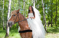 Young woman in the dress of fiancee on a horse Stock Images