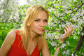 Young woman enjoying smell of blooming tree Royalty Free Stock Photo