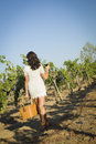 Young woman enjoying a walk and wine in vineyard mixed race glass of the Stock Images