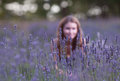 Young woman field blossoming lavender attractive girl hiding behind bush blooming lavender focus foreground Royalty Free Stock Photo