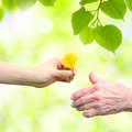 Young woman giving a dandelion to senior woman Royalty Free Stock Photo