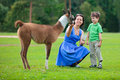 Young woman and her little son feeding baby lama Royalty Free Stock Photography