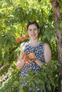 Young Woman Holding Peaches. Royalty Free Stock Photo