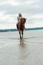 image photo : Young woman on a horse