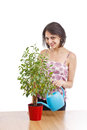 Young woman irrigate plants Royalty Free Stock Photo