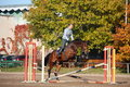 Young woman jumping barrier on brown horse in autumn Stock Images