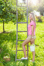 Young woman with a ladder picking apples from an apple tree Royalty Free Stock Photo
