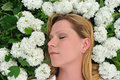 Young woman laying in flowers - snowballs Royalty Free Stock Image