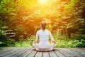 Young woman meditating in a forest. Zen, meditation, healthy breathing Royalty Free Stock Photo