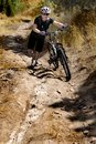 Young Woman Mountain Biking Stock Photo