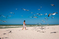 Woman feeding a flock of seagulls on a beach Royalty Free Stock Photo