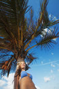 Young woman and a palm tree Royalty Free Stock Image
