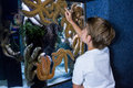 Young woman pointing a starfish tank at the aquarium Stock Images