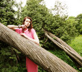 Young woman posing on a tree fashion Royalty Free Stock Images