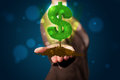 Young woman presenting green glowing dollar sign beautiful Royalty Free Stock Photo