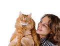Young woman with red fluffy cat on a white background Stock Images