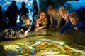 Young woman and several children see after fishes women in enlighted pool at oceanarium Royalty Free Stock Images