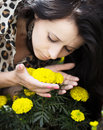 Young woman smelling flowers beautiful yellow in garden Stock Photography