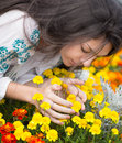 Young woman smelling flowers beautiful yellow in garden Royalty Free Stock Photo