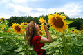 Young Woman Smelling a Sunflower Stock Image