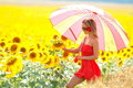 Young woman on sunflower field Royalty Free Stock Photos