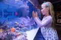 Young woman touching a starfish tank at the aquarium Stock Photo