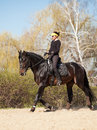 Young woman trains a horse Royalty Free Stock Photo