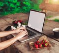 Young woman using and typing laptop computer at rough wooden table with coffee cup, strawberries, bouquet of peonies flowers Royalty Free Stock Photo