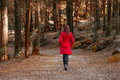 Young woman walking away alone on a forest path Royalty Free Stock Photo