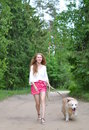 Young woman walking with golden retriever Royalty Free Stock Photo