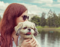 Young woman is walking with her dog instagram toned dog in f focus Stock Photography