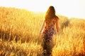 Young woman walking in wheat field Royalty Free Stock Photo