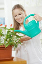 Young woman watering plant Stock Images