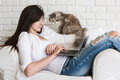 Young woman works on laptop and her cat nearby Royalty Free Stock Photo