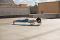 Young woman in a yoga four limbed staff pose on the roof Stock Images