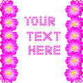 Your text here Royalty Free Stock Photo