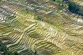Yuanyang Rice Terraces, Yunnan - China Royalty Free Stock Photo