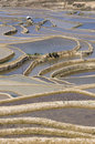 Yuanyang terraced fields Stock Image