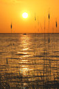 Yucatan peninsula beach sunset on the town of progreso on a Stock Photography