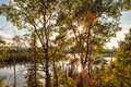 Yukon river sunburst through birch trees along the in canada in summer Stock Photos