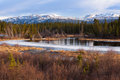 Yukon taiga wetland marsh spring thaw canada boreal forest in territory Stock Photography