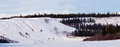 Yukon winter landscape and dogs pull musher sled Royalty Free Stock Photo